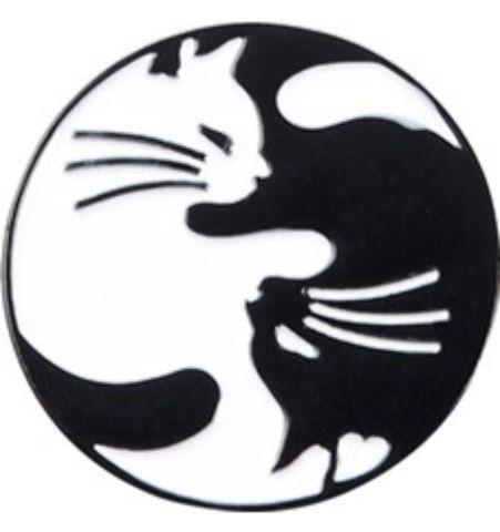 Pin Gatos Jingyan