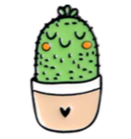 Pin Cactus Maceta Corazón